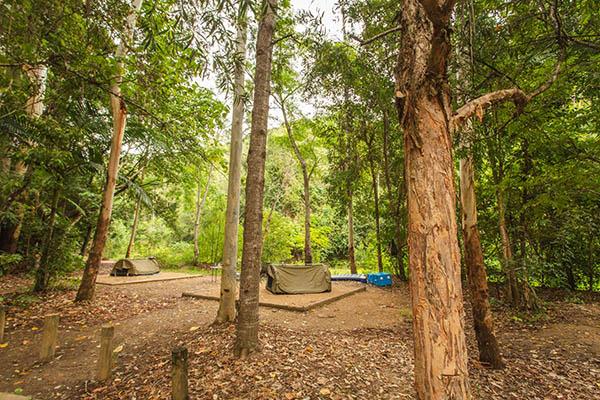 Booloumba Creek Camping, Conondale National Park